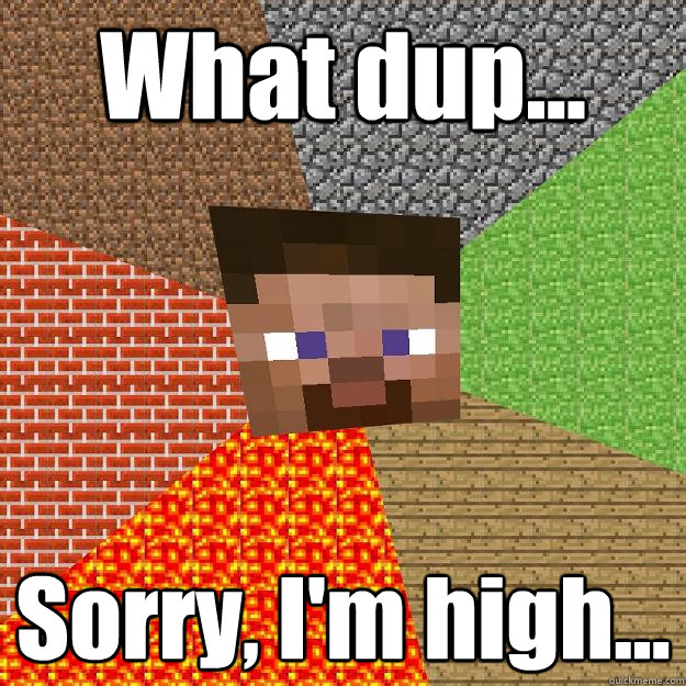 what dup sorry im high - Minecraft