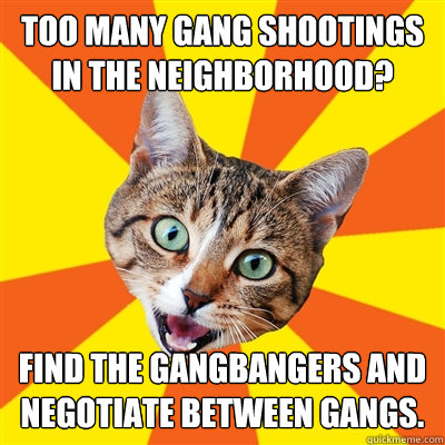 too many gang shootings in the neighborhood find the gangba - Bad Advice Cat