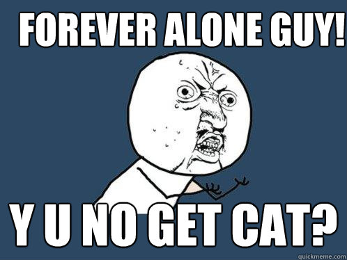 forever alone guy y u no get cat - Y U No