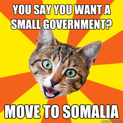 you say you want a small government move to somalia - Bad Advice Cat