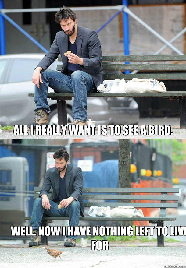 all i really want is to see a bird well now i have nothing - Sad Keanu
