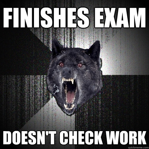 finishes exam doesnt check work - Insanity Wolf