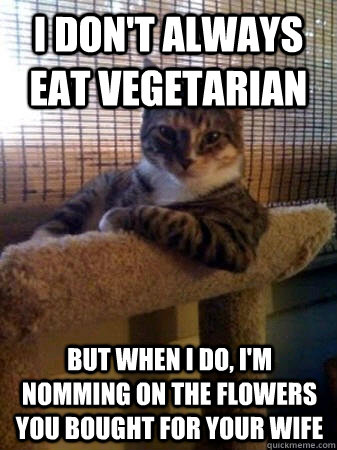i dont always eat vegetarian but when i do im nomming on  - The Most Interesting Cat in the World