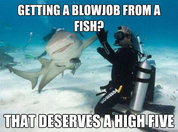 3ochyg the 25 funniest shark memes complex