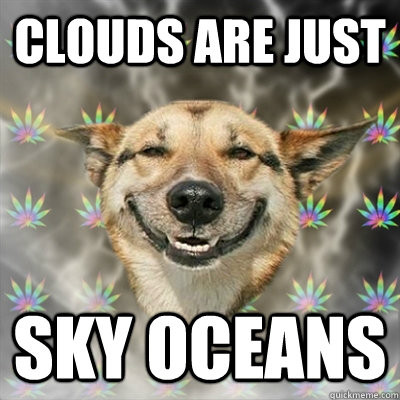 clouds are just sky oceans - Stoner Dog