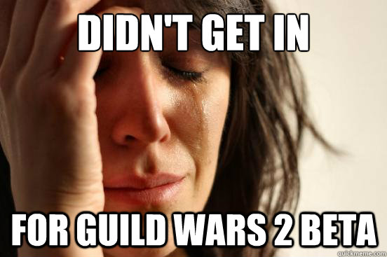 didnt get in for guild wars 2 beta - First World Problems