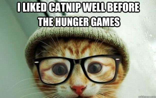 i liked catnip well before the hunger games - Cute Hipster Cat