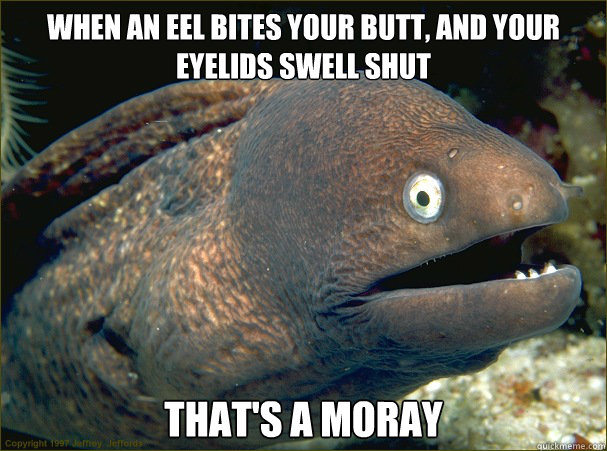 when an eel bites your butt and your eyelids swell shut tha - Bad Joke Eel