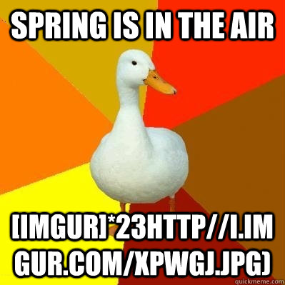 spring is in the air imgur23httpiimgurcomxpwgjjpg - Tech Impaired Duck