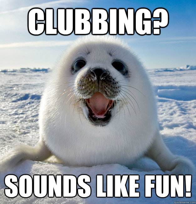 clubbing sounds like fun - Naive Seal Cub