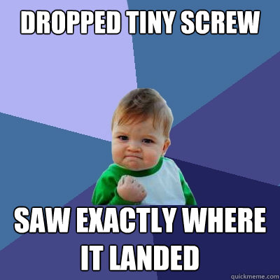 dropped tiny screw saw exactly where it landed - Success Kid
