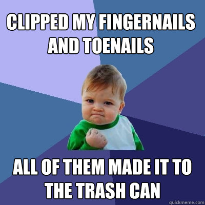 clipped my fingernails and toenails all of them made it to t - Success Kid