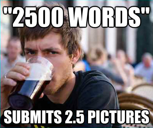 2500 words submits 25 pictures - College Senior