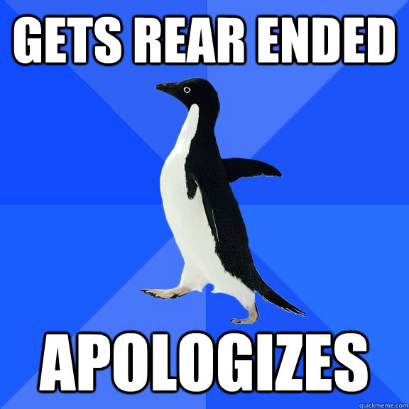 gets rear ended apologizes - Socially Awkward Penguin