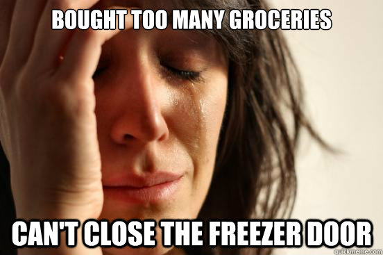 bought too many groceries cant close the freezer door - First World Problems