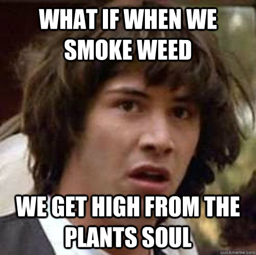 what if when we smoke weed we get high from the plants soul - conspiracy keanu