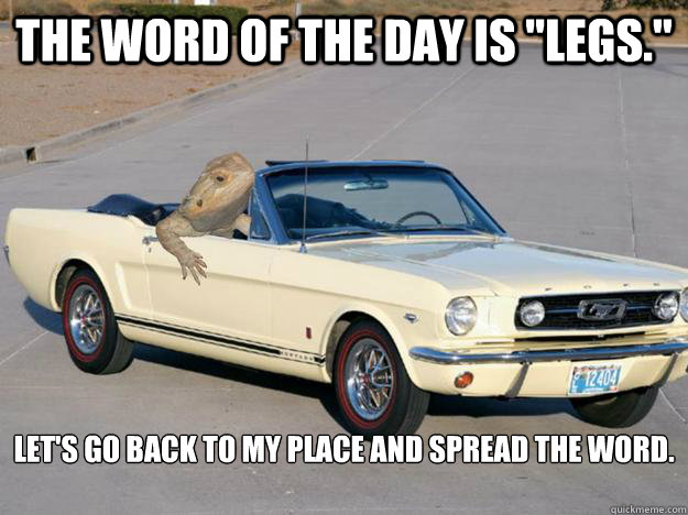 the word of the day is legs lets go back to my place an - Pickup Dragon