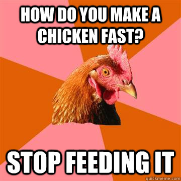 how do you make a chicken fast stop feeding it - Anti-Joke Chicken