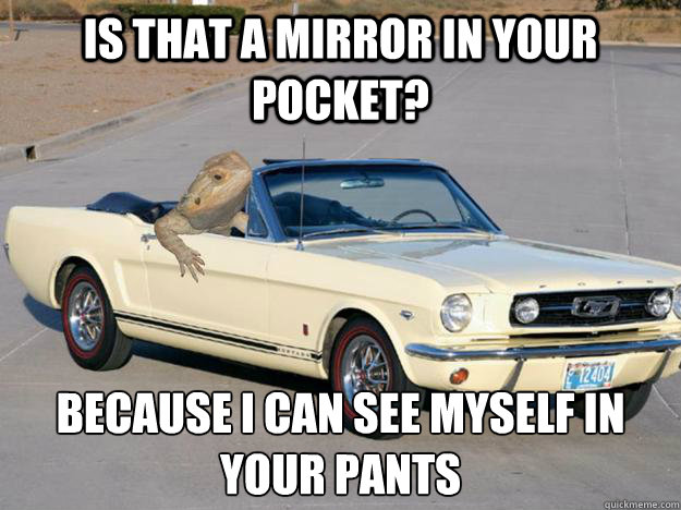 is that a mirror in your pocket because i can see myself in - Pickup Dragon