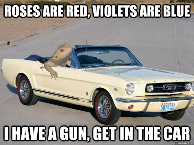 roses are red violets are blue i have a gun get in the car - Pickup Dragon