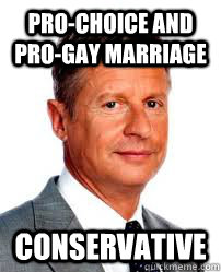 prochoice and progay marriage conservative - Good Guy Gary Johnson