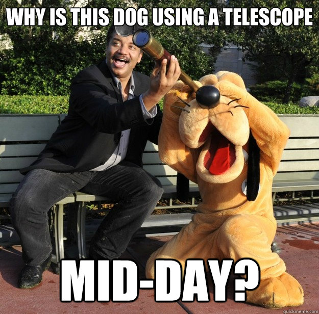 why is this dog using a telescope midday - Tyson and Pluto