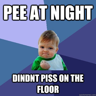 pee at night dindnt piss on the floor - Success Kid