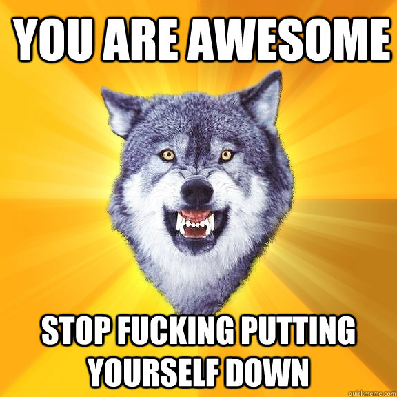 you are awesome stop fucking putting yourself down - Courage Wolf