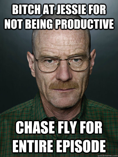 bitch at jessie for not being productive chase fly for entir - Advice Walter White