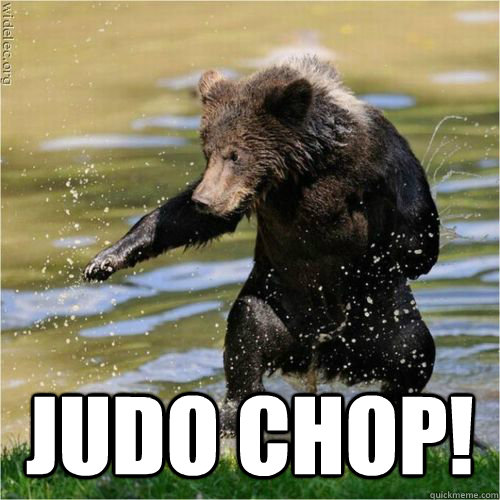judo chop - Karate Bear