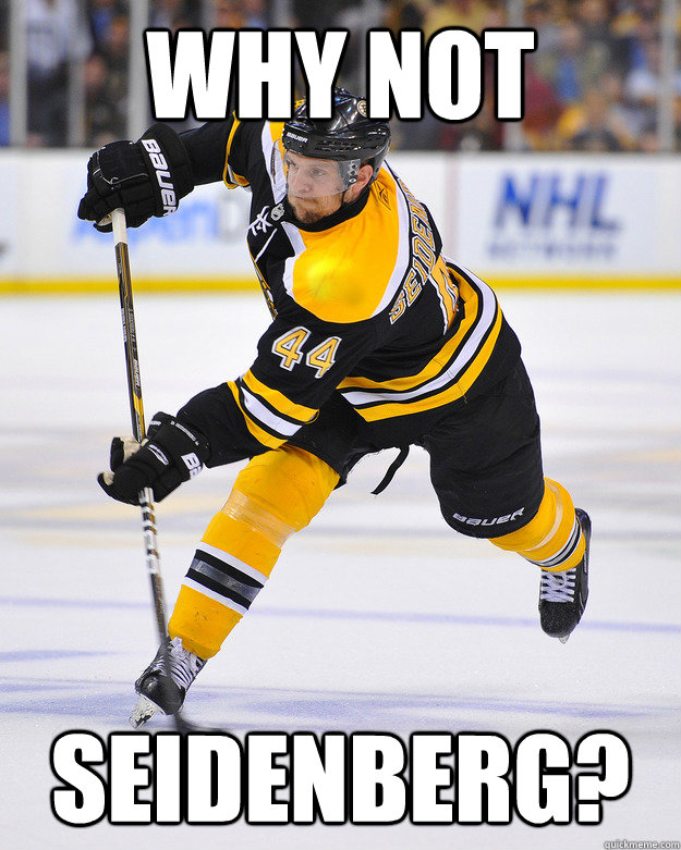 why not seidenberg - boston fans why not seidenberg