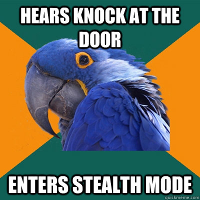 hears knock at the door enters stealth mode - Paranoid Parrot