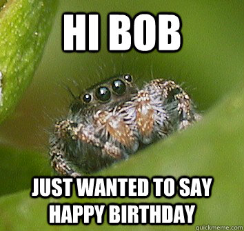 hi bob just wanted to say happy birthday  - Misunderstood Spider