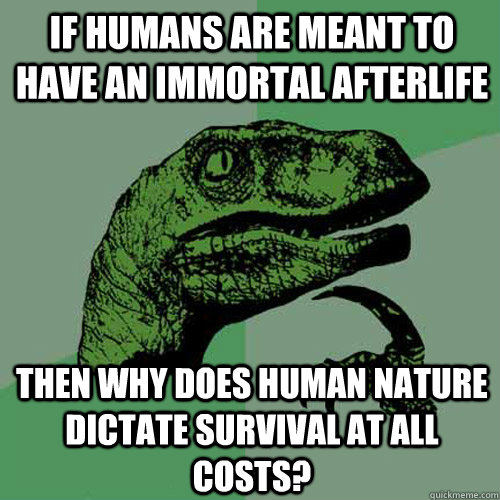 if humans are meant to have an immortal afterlife then why d - Philosoraptor