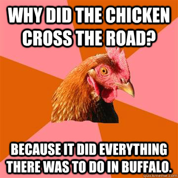 why did the chicken cross the road because it did everythin - Anti-Joke Chicken
