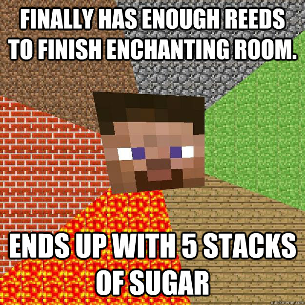 finally has enough reeds to finish enchanting room ends up  - Minecraft