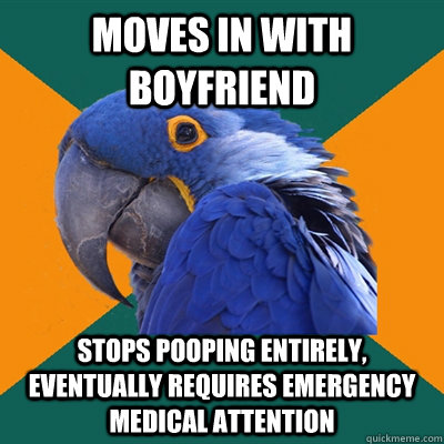 moves in with boyfriend stops pooping entirely eventually r - Paranoid Parrot