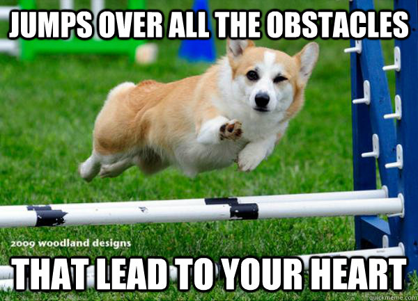 jumps over all the obstacles that lead to your heart -