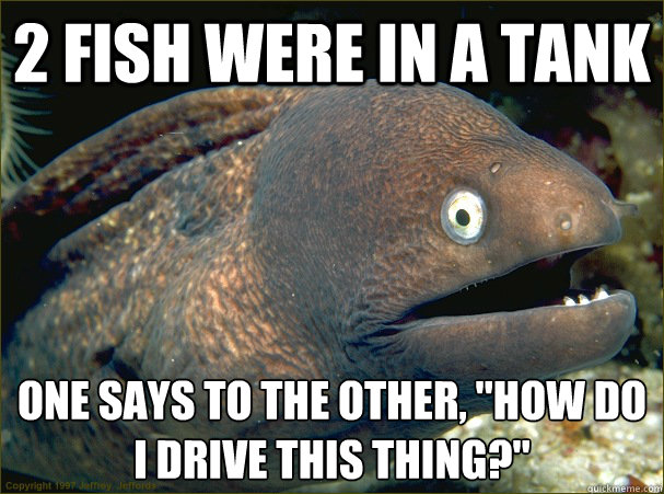 2 fish were in a tank one says to the other how do i drive - Bad Joke Eel