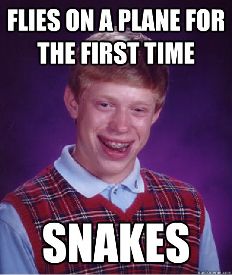 flies on a plane for the first time snakes - Bad Luck Brian