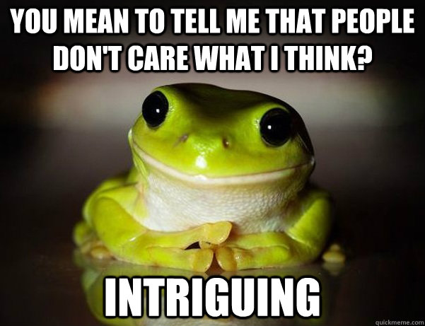 you mean to tell me that people dont care what i think int - Fascinated Frog
