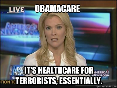 obamacare its healthcare for terrorists essentially - Megyn Kelly