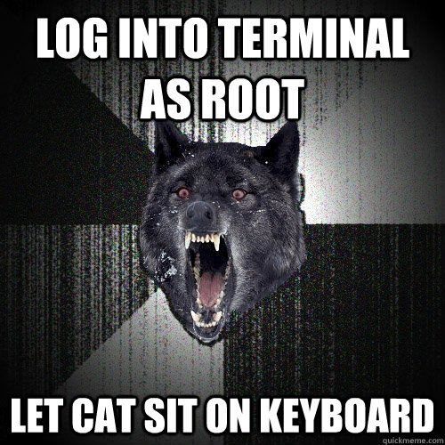 log into terminal as root let cat sit on keyboard - Insanity Wolf