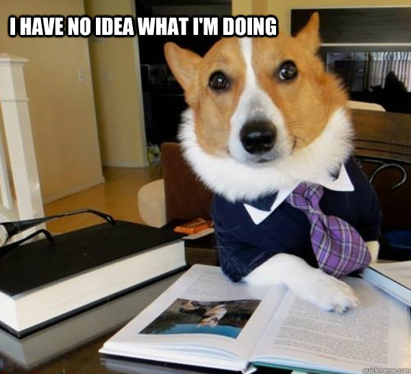 i have no idea what im doing - Lawyer Dog