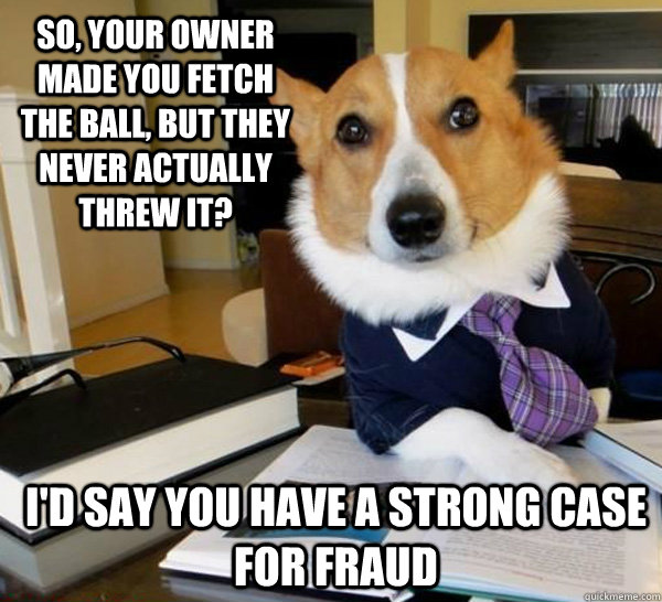 so your owner made you fetch the ball but they never actua - Lawyer Dog