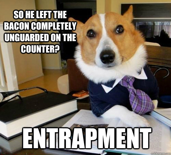 so he left the bacon completely unguarded on the counter en - Lawyer Dog