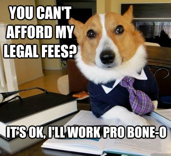 you cant afford my legal fees its ok ill work pro bone - Lawyer Dog