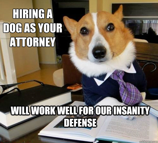 hiring a dog as your attorney will work well for our insanit - Lawyer Dog