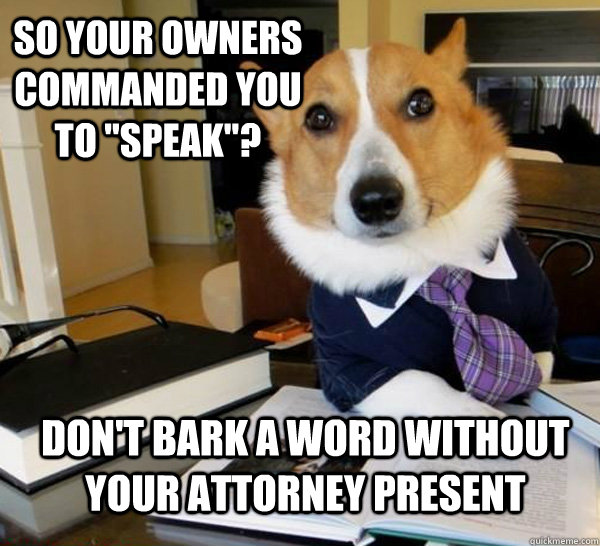 so your owners commanded you to speak dont bark a word w - Lawyer Dog