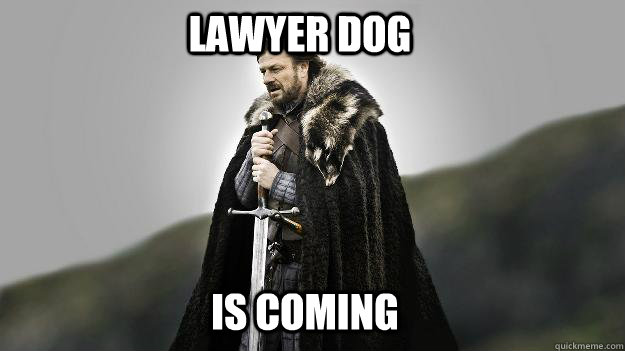 lawyer dog is coming - Ned stark winter is coming